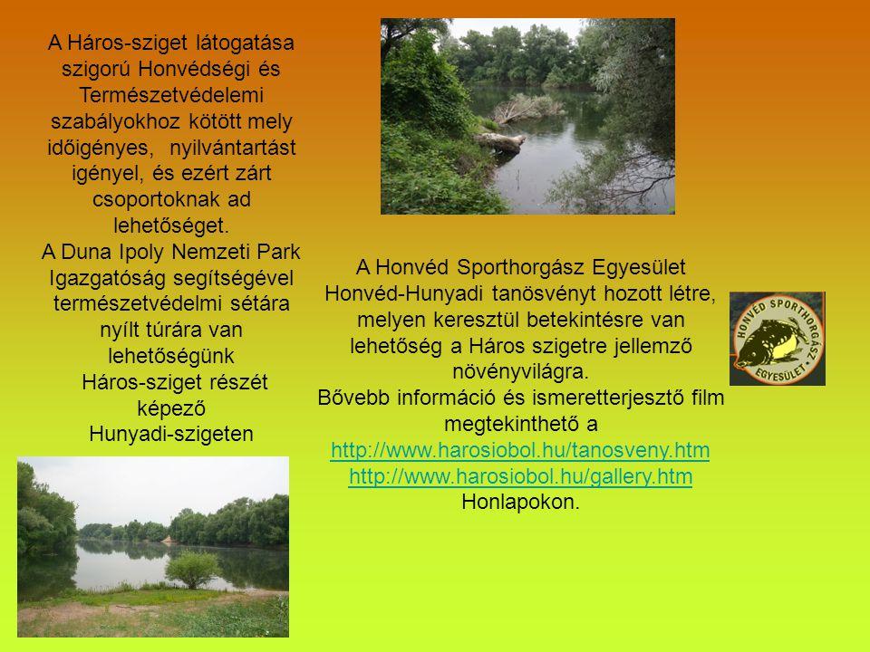 Geológiai érték Kialakulása a Duna alsó szakasz jellegéből adódó hordaléklerakásához kötődik.