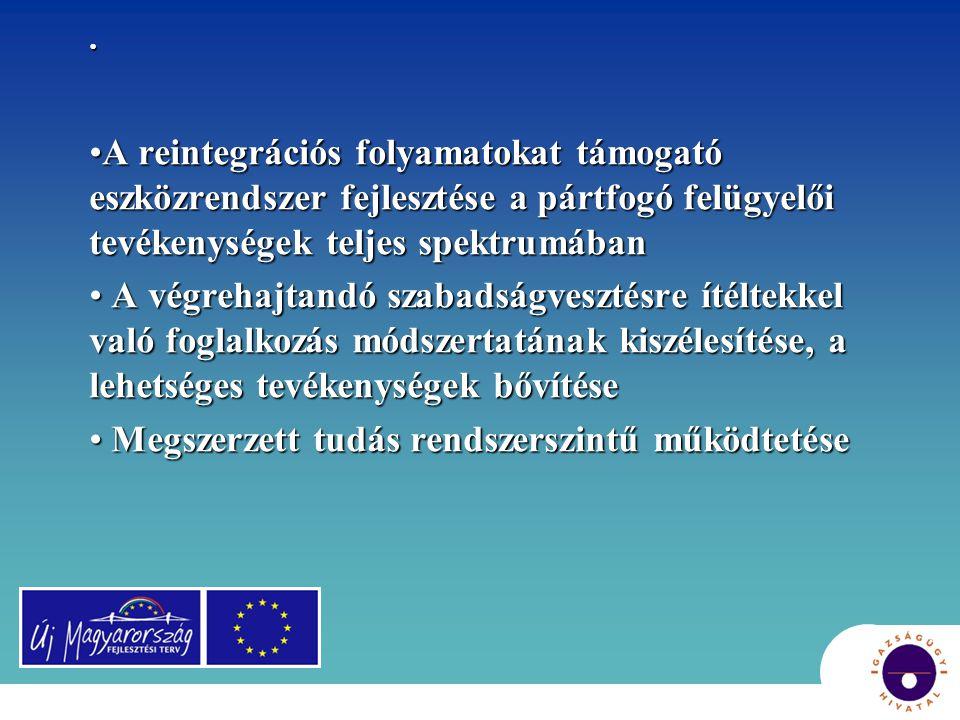 A társadalmi integráció követelményei [1]: [1] 2006-tól Európa-szinten követelmény: Az alapvető forrásokhoz való garantált hozzáférés biztosítása, jogok és szolgáltatások a társadalmi részvétel biztosítására, a kirekesztődés extrém formáinak kezelése és harc a diszkrimináció formái ellen, melyek kirekesztődéshez vezetnek.
