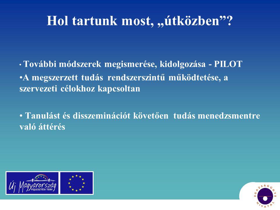 Disszemináció vagy Knowledge Managment (KM).