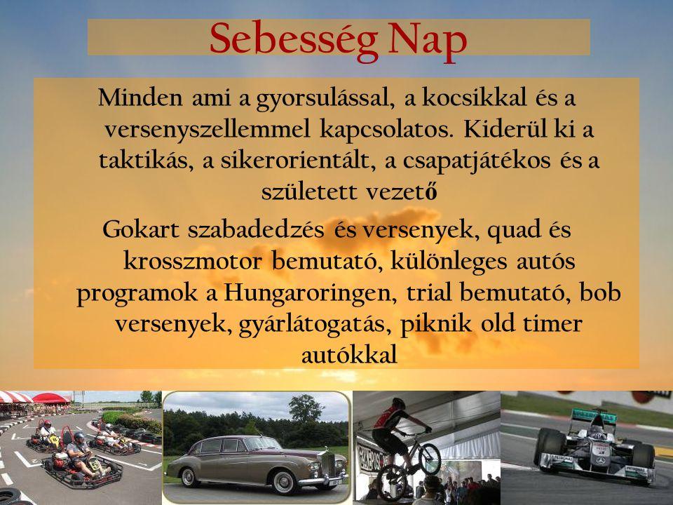 Sebesség Nap Minden ami a gyorsulással, a kocsikkal és a versenyszellemmel kapcsolatos. Kiderül ki a taktikás, a sikerorientált, a csapatjátékos és a