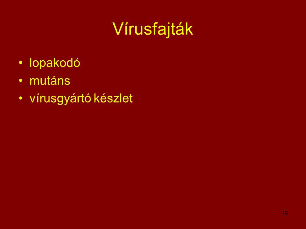 19 Vírusfajták •lopakodó •mutáns •vírusgyártó készlet