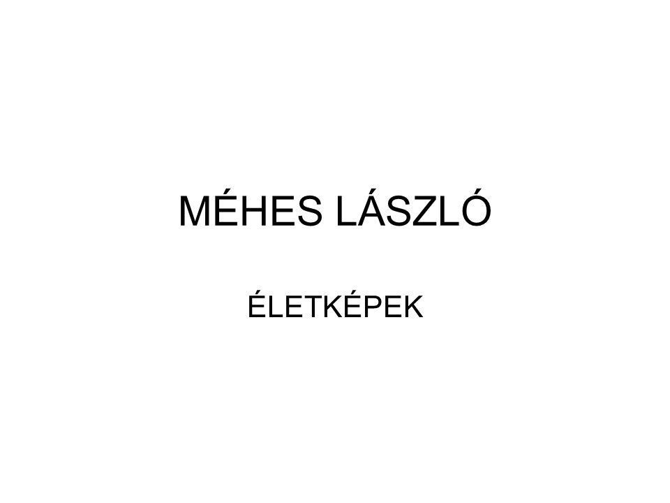Méhes László 1985