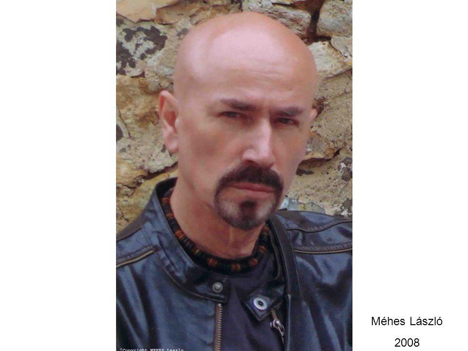 Méhes László 2008
