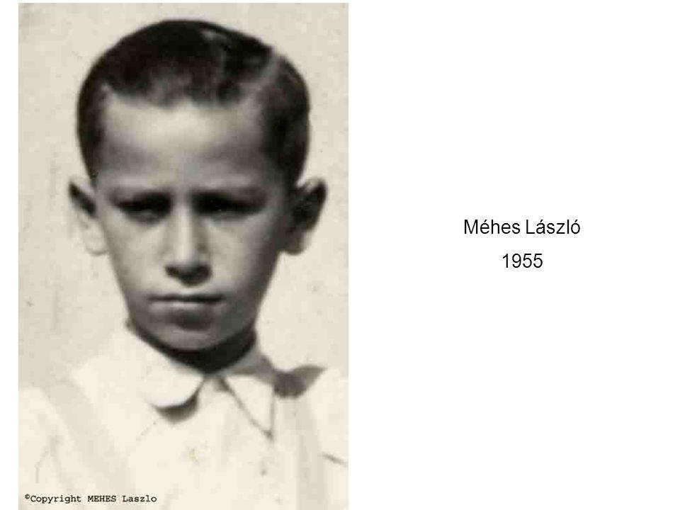 Méhes László 1955