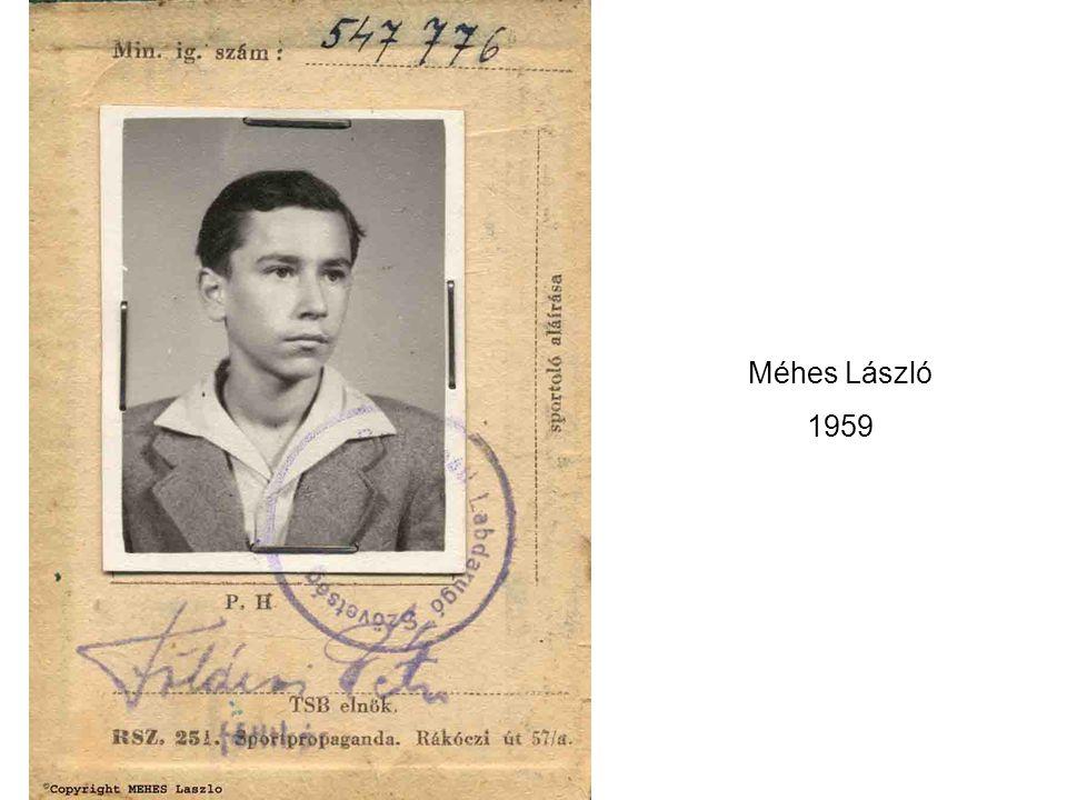 Méhes László Édesapja, munka közben az 1960-as években
