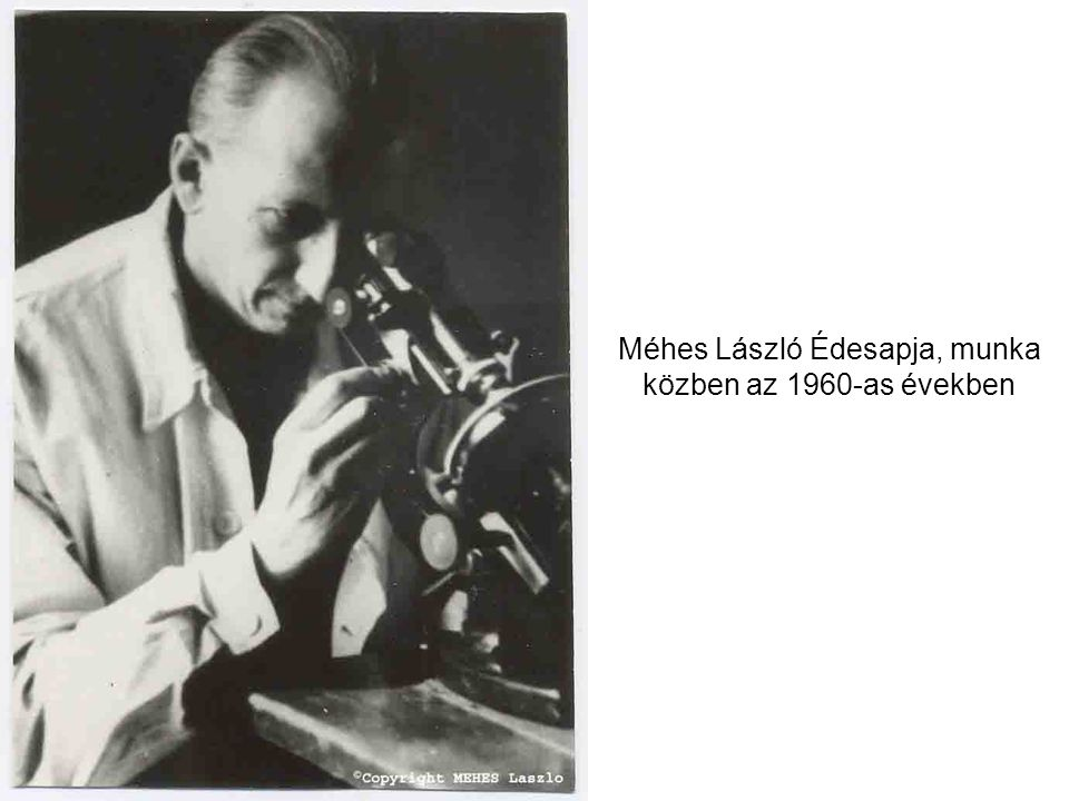 """Sztárovszky amerikai filmproducer (az első """"Szupermen producere) Méhes Lászlóval beszélgetve a Bremen-Méhes kiállításon a Dmorchowszky galériában Párizsban."""