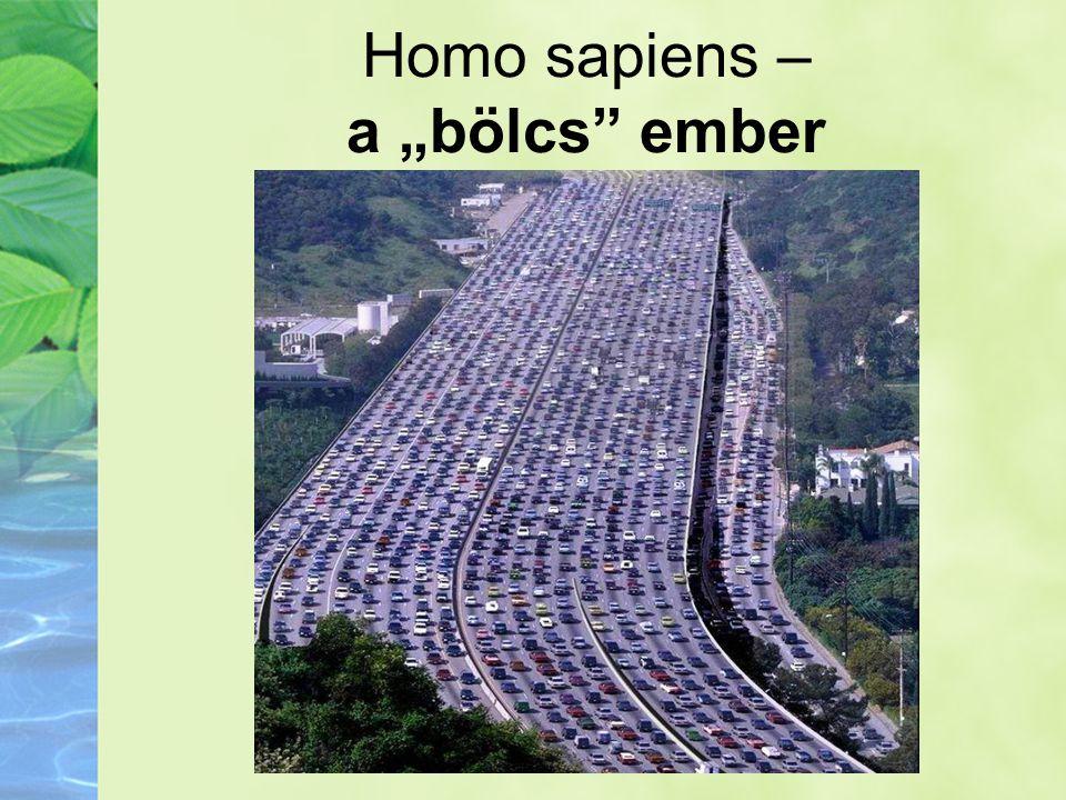 """Homo sapiens – a """"bölcs"""" ember"""