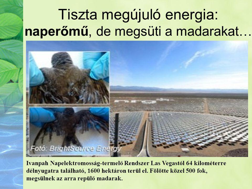 Tiszta megújuló energia: naperőmű, de megsüti a madarakat… Ivanpah Napelektromosság-termelő Rendszer Las Vegastól 64 kilométerre délnyugatra található
