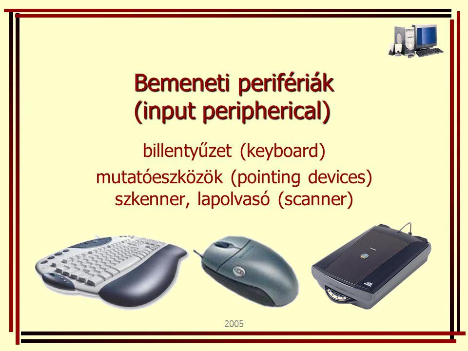 2005 Bemeneti perifériák (input peripherical) billentyűzet (keyboard) mutatóeszközök (pointing devices) szkenner, lapolvasó (scanner)