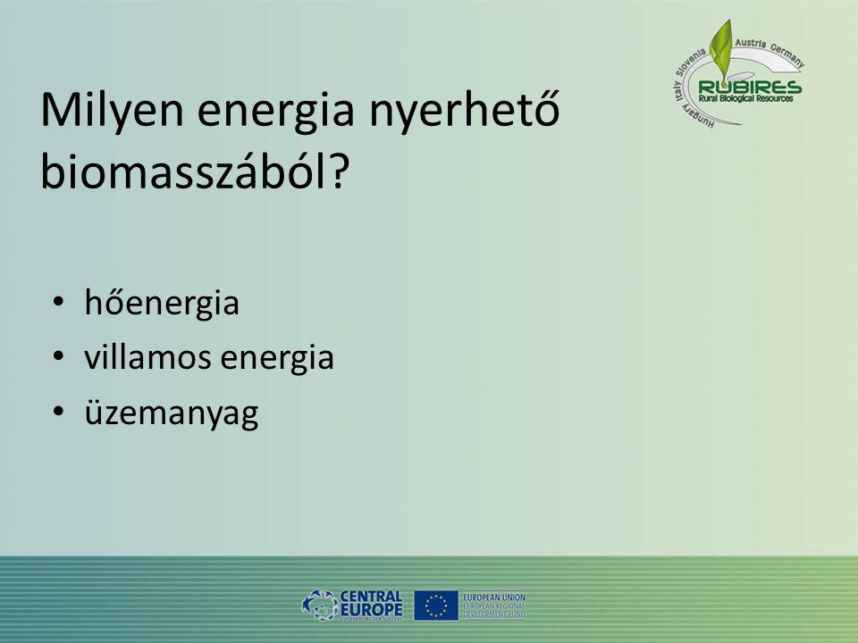 Milyen energia nyerhető biomasszából • hőenergia • villamos energia • üzemanyag