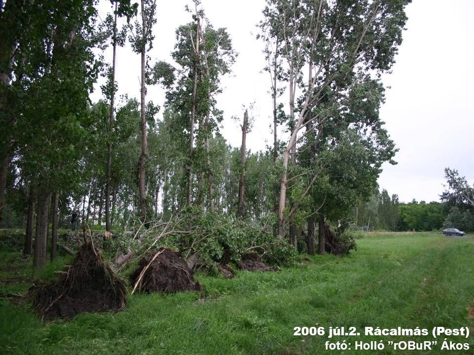 2006 júl.2. Rácalmás (Pest) fotó: Holló rOBuR Ákos