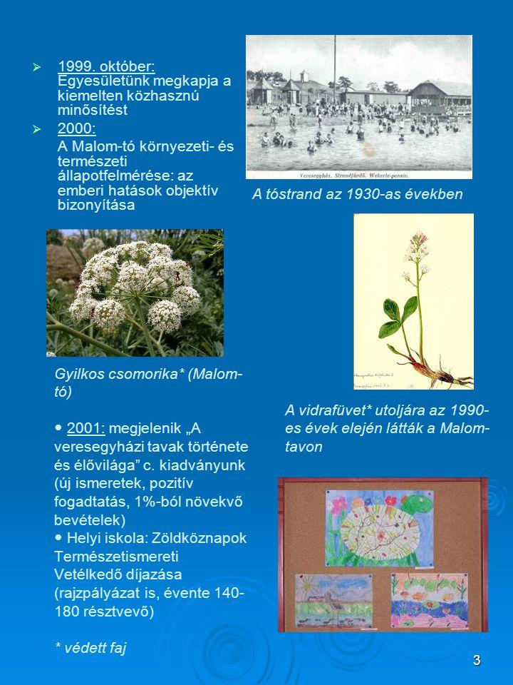 """3 Gyilkos csomorika* (Malom- tó)  2001: megjelenik """"A veresegyházi tavak története és élővilága"""" c. kiadványunk (új ismeretek, pozitív fogadtatás, 1%"""