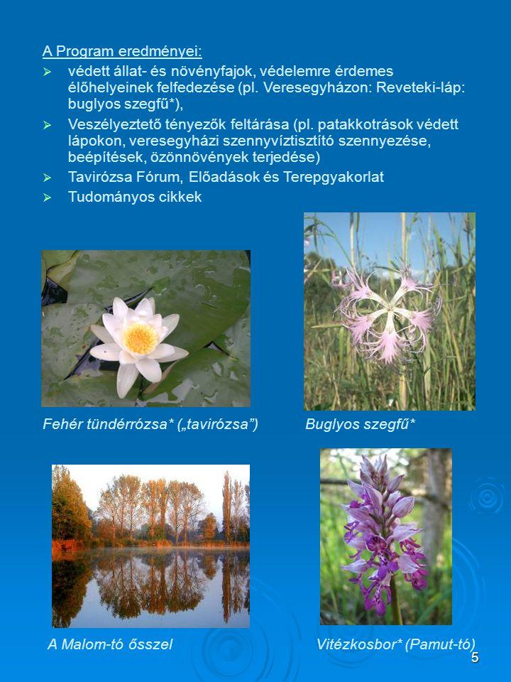 5 A Program eredményei:  védett állat- és növényfajok, védelemre érdemes élőhelyeinek felfedezése (pl. Veresegyházon: Reveteki-láp: buglyos szegfű*),