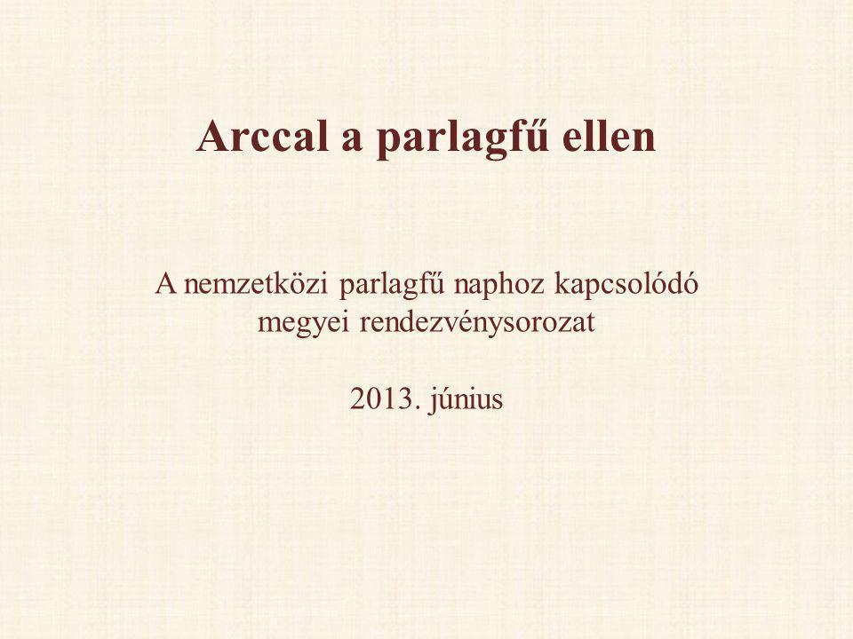 Arccal a parlagfű ellen A nemzetközi parlagfű naphoz kapcsolódó megyei rendezvénysorozat 2013. június