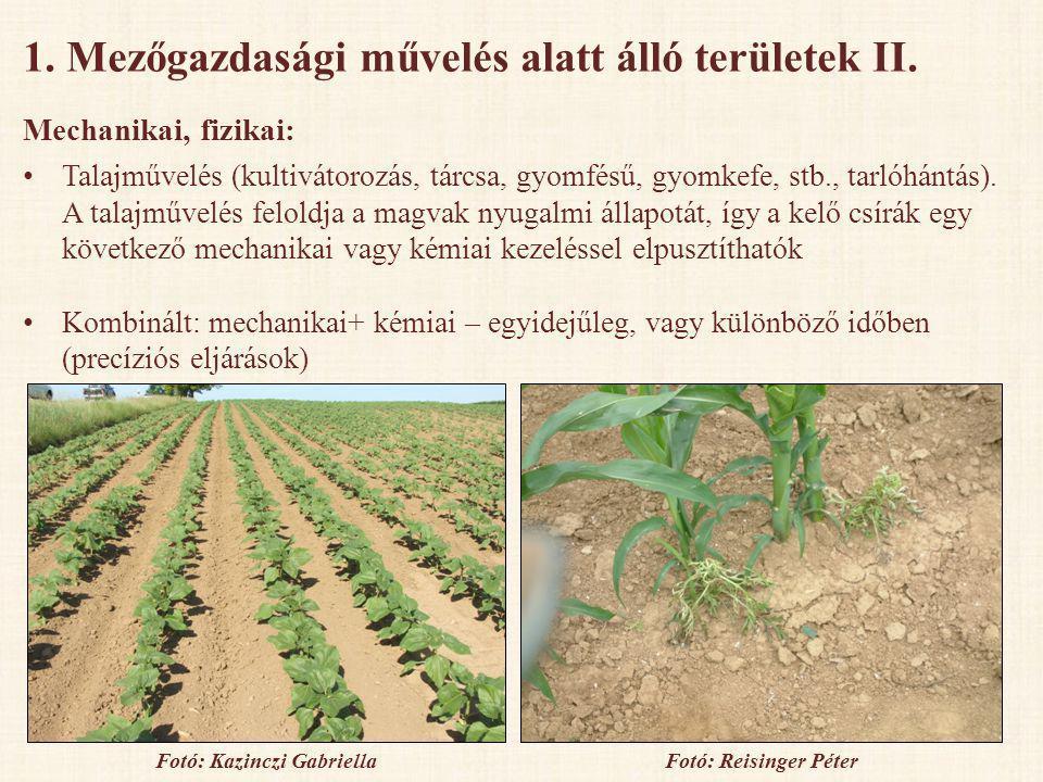 1. Mezőgazdasági művelés alatt álló területek II. Mechanikai, fizikai: • Talajművelés (kultivátorozás, tárcsa, gyomfésű, gyomkefe, stb., tarlóhántás).