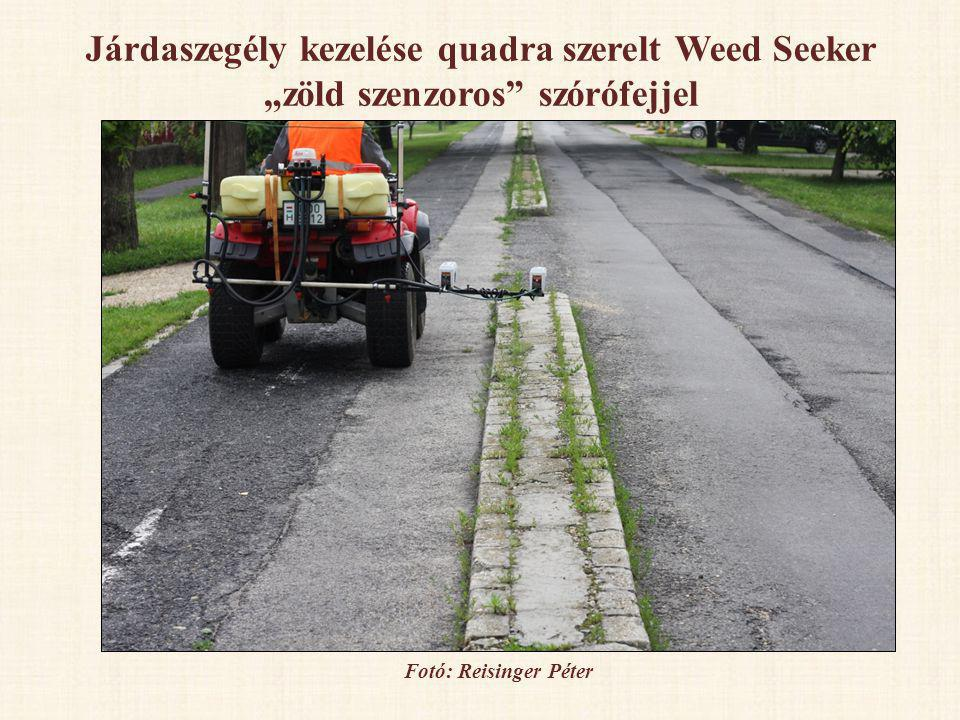 """Járdaszegély kezelése quadra szerelt Weed Seeker """"zöld szenzoros"""" szórófejjel Fotó: Reisinger Péter"""