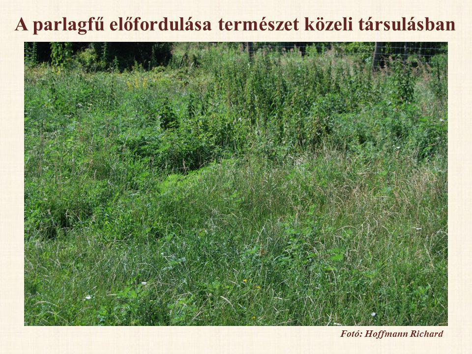 1.Mezőgazdasági művelés alatt álló területek III.