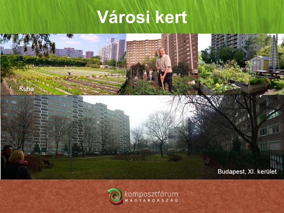 Városi kert Kuba Budapest, XI. kerület