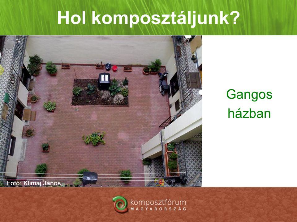 Hol komposztáljunk? Gangos házban Fotó: Klimaj János