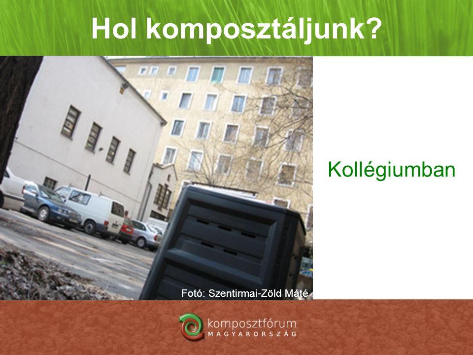 Hol komposztáljunk? Kollégiumban Fotó: Szentirmai-Zöld Máté