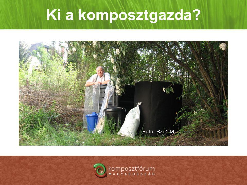Ki a komposztgazda? Fotó: Sz-Z-M
