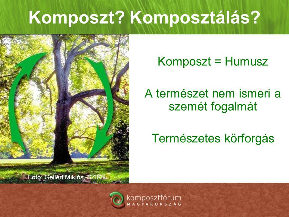 Komposzt? Komposztálás? Komposzt = Humusz A természet nem ismeri a szemét fogalmát Természetes körforgás Fotó: Gellért Miklós, SZIKE