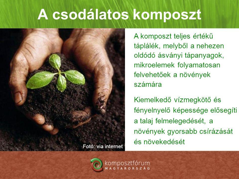 A csodálatos komposzt A komposzt teljes értékű táplálék, melyből a nehezen oldódó ásványi tápanyagok, mikroelemek folyamatosan felvehetőek a növények