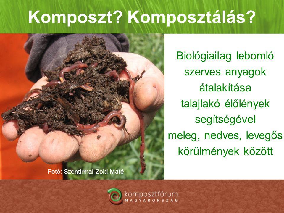 Komposzt? Komposztálás? Biológiailag lebomló szerves anyagok átalakítása talajlakó élőlények segítségével meleg, nedves, levegős körülmények között Fo