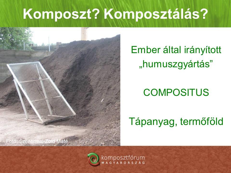 """Komposzt? Komposztálás? Ember által irányított """"humuszgyártás"""" COMPOSITUS Tápanyag, termőföld Fotó: Szentirmai-Zöld Máté"""