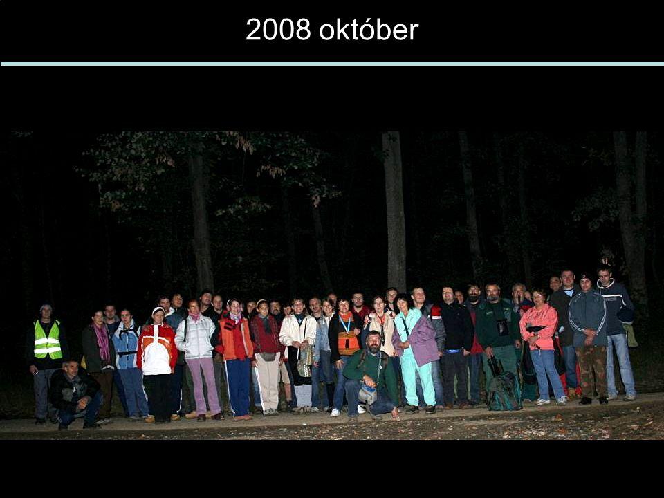 2008 október