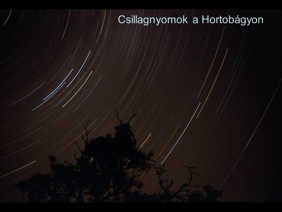Csillagnyomok a Hortobágyon