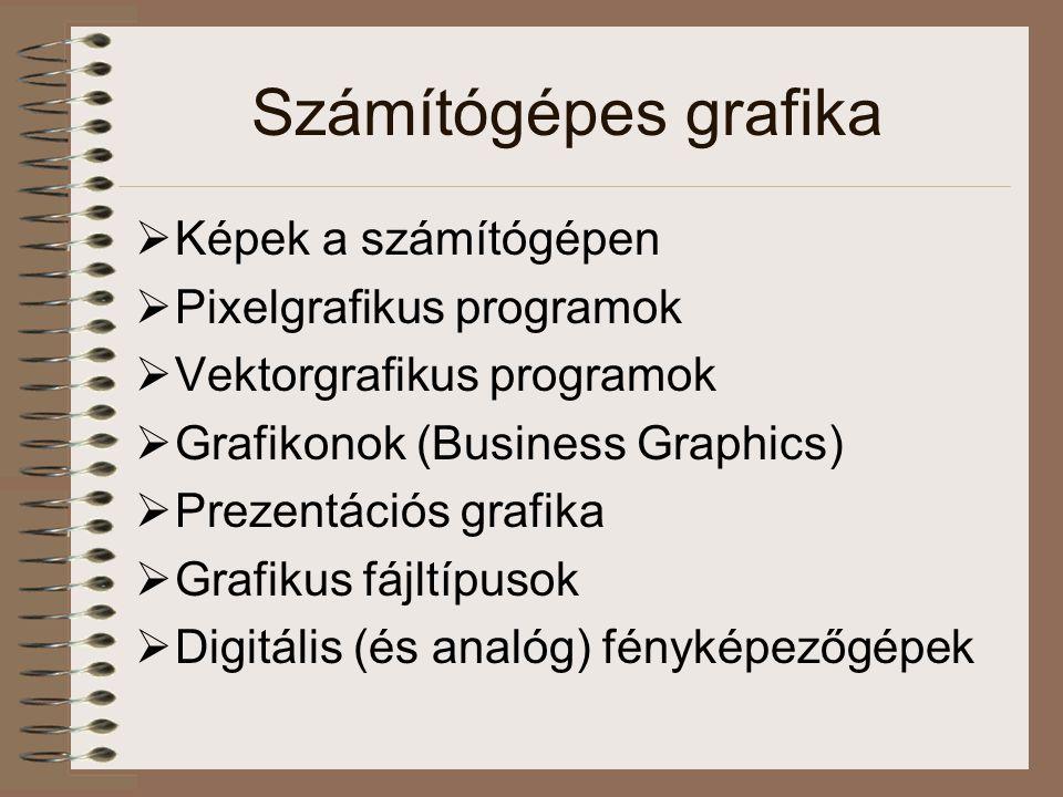 Számítógépes grafika  Képek a számítógépen  Pixelgrafikus programok  Vektorgrafikus programok  Grafikonok (Business Graphics)  Prezentációs grafika  Grafikus fájltípusok  Digitális (és analóg) fényképezőgépek
