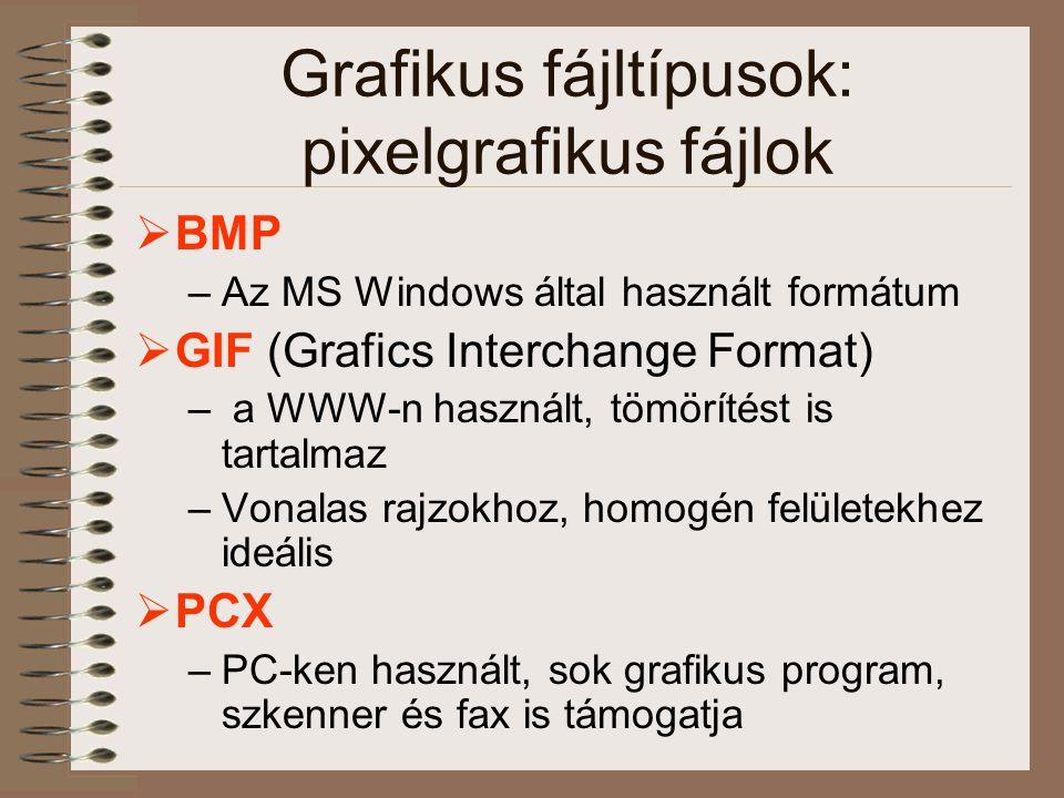 Grafikus fájltípusok: pixelgrafikus fájlok  BMP –Az MS Windows által használt formátum  GIF (Grafics Interchange Format) – a WWW-n használt, tömörít