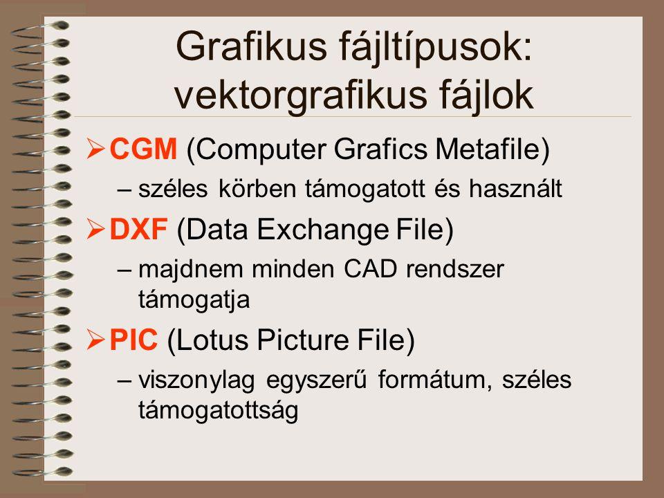 Grafikus fájltípusok: vektorgrafikus fájlok  CGM (Computer Grafics Metafile) –széles körben támogatott és használt  DXF (Data Exchange File) –majdnem minden CAD rendszer támogatja  PIC (Lotus Picture File) –viszonylag egyszerű formátum, széles támogatottság