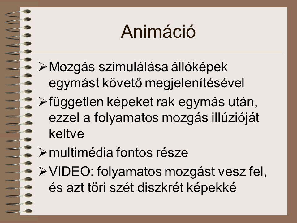 Animáció  Mozgás szimulálása állóképek egymást követő megjelenítésével  független képeket rak egymás után, ezzel a folyamatos mozgás illúzióját keltve  multimédia fontos része  VIDEO: folyamatos mozgást vesz fel, és azt töri szét diszkrét képekké