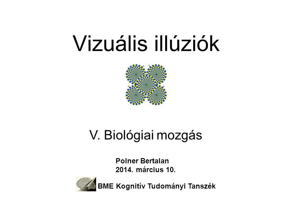 Vizuális illúziók V.Biológiai mozgás Polner Bertalan 2014.