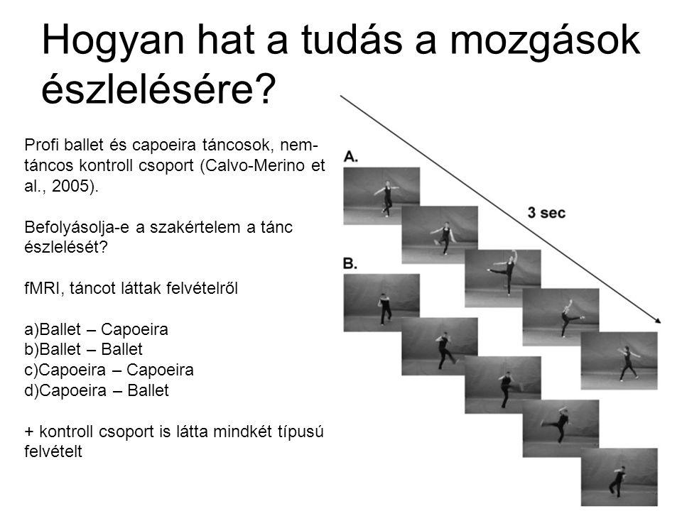 Hogyan hat a tudás a mozgások észlelésére? Profi ballet és capoeira táncosok, nem- táncos kontroll csoport (Calvo-Merino et al., 2005). Befolyásolja-e