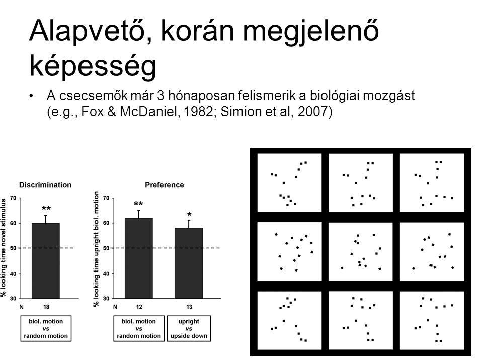 Alapvető, korán megjelenő képesség •A csecsemők már 3 hónaposan felismerik a biológiai mozgást (e.g., Fox & McDaniel, 1982; Simion et al, 2007)