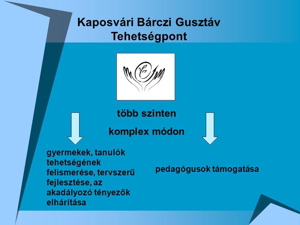 A Bárczi Gusztáv Módszertani Központ tehetségpontjának programja  A kutató-fejlesztő csoport által összeállított, kipróbált és javított szűrőanyaggal a tehetségek kiszűrése  Tehetségkutató gála szervezése  A tanulók tehetségének gondozása  Tehetséges gyerekek mentorálása – mentorprogramok  Tehetség-tanácsadás
