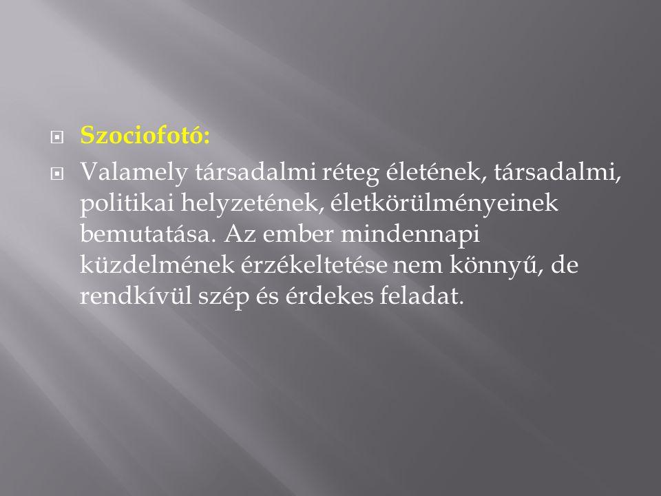  Szociofotó:  Valamely társadalmi réteg életének, társadalmi, politikai helyzetének, életkörülményeinek bemutatása.