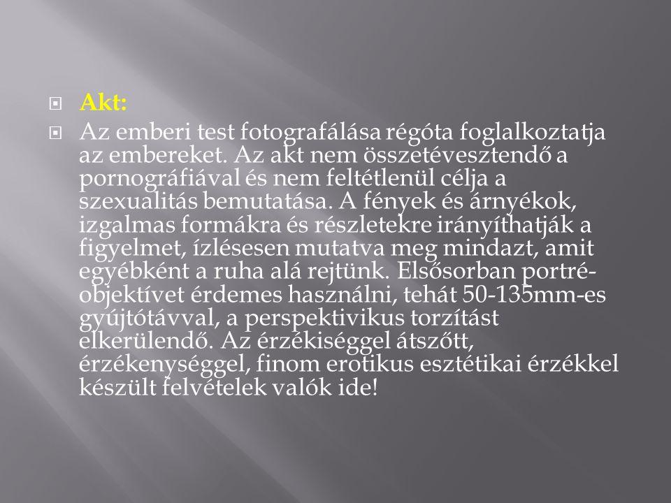  Akt:  Az emberi test fotografálása régóta foglalkoztatja az embereket.