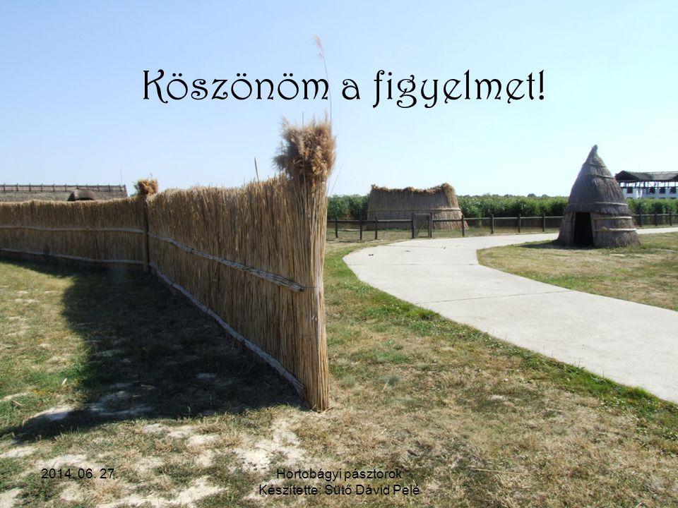 2014. 06. 27.Hortobágyi pásztorok Készítette: Sütő Dávid Pelé Köszönöm a figyelmet!