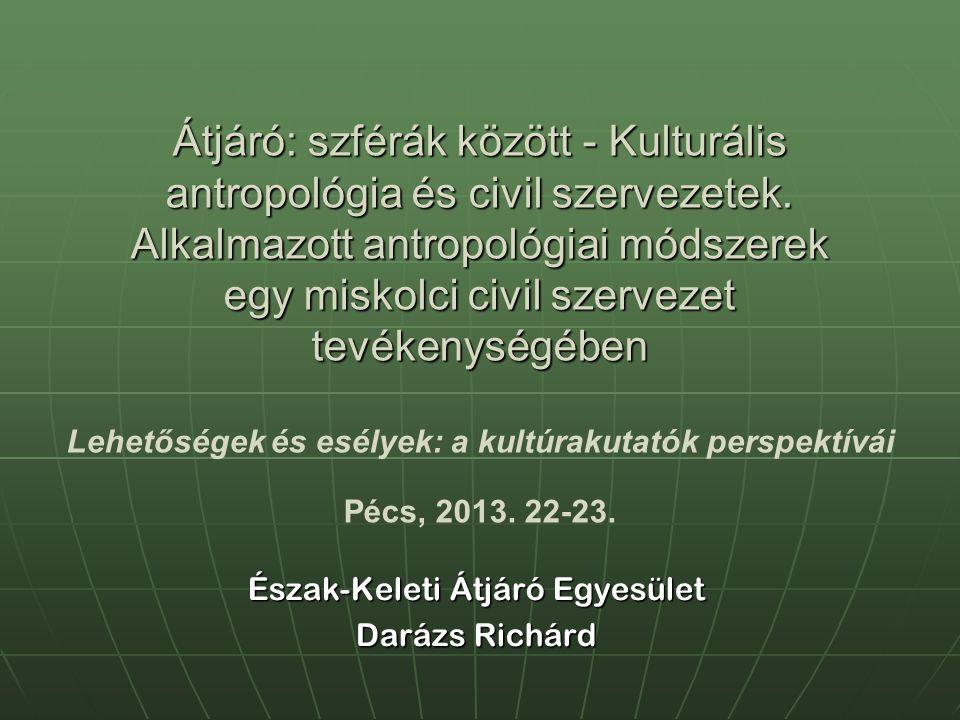 Átjáró: szférák között - Kulturális antropológia és civil szervezetek. Alkalmazott antropológiai módszerek egy miskolci civil szervezet tevékenységébe