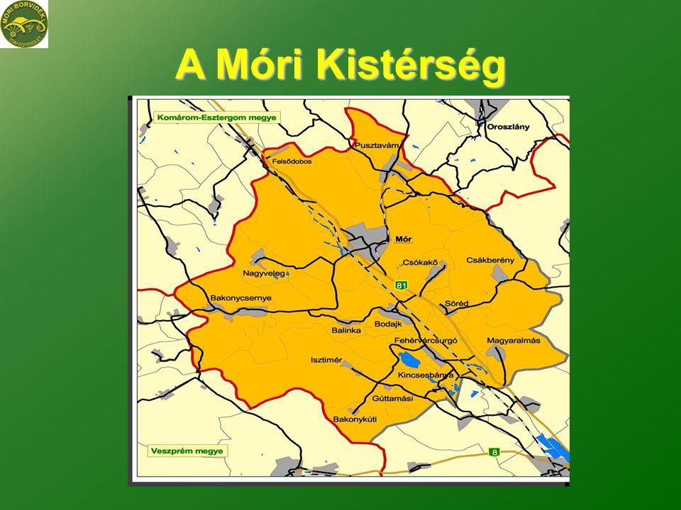 A térség jellemzői •A kistérség területe 430 km2 •Lakossága több, mint 35.332 fő •Településeinek száma 13 •Népsűrűsége 81,5 fő/km2 •Fejér megye harmadik fejlődő ipari központja