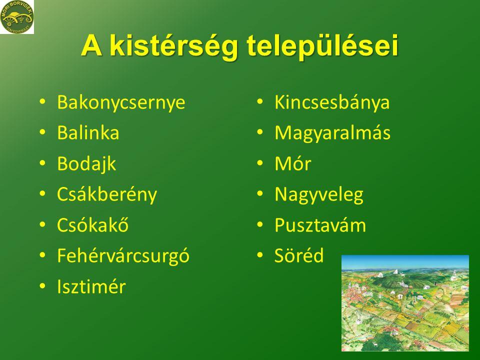 A kistérség települései • Bakonycsernye • Balinka • Bodajk • Csákberény • Csókakő • Fehérvárcsurgó • Isztimér • Kincsesbánya • Magyaralmás • Mór • Nagyveleg • Pusztavám • Söréd