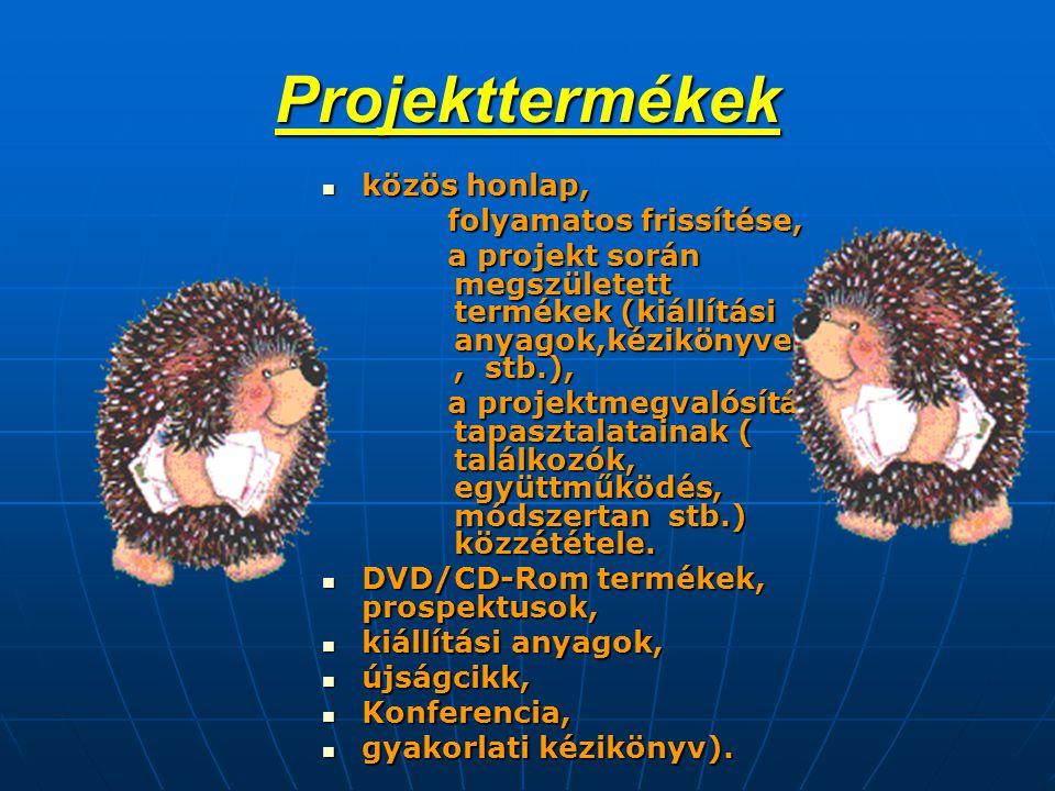 Projekttermékek  közös honlap, folyamatos frissítése, folyamatos frissítése, a projekt során megszületett termékek (kiállítási anyagok,kézikönyvek, stb.), a projekt során megszületett termékek (kiállítási anyagok,kézikönyvek, stb.), a projektmegvalósítás tapasztalatainak ( találkozók, együttműködés, módszertan stb.) közzététele.