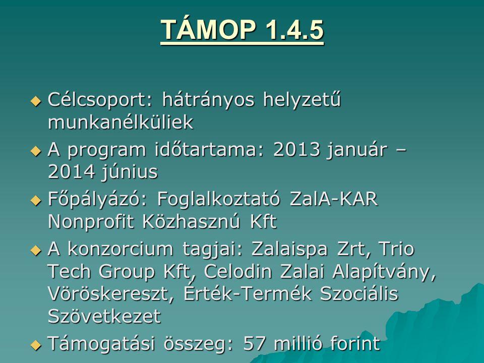 TÁMOP 1.4.5  Célcsoport: hátrányos helyzetű munkanélküliek  A program időtartama: 2013 január – 2014 június  Főpályázó: Foglalkoztató ZalA-KAR Nonp