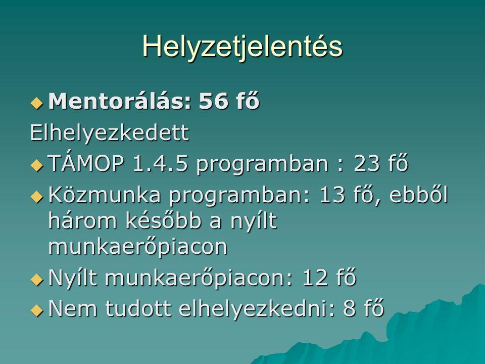Helyzetjelentés  Mentorálás: 56 fő Elhelyezkedett  TÁMOP 1.4.5 programban : 23 fő  Közmunka programban: 13 fő, ebből három később a nyílt munkaerőp