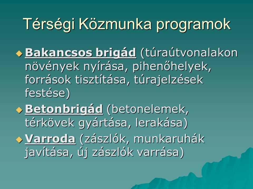 Térségi Közmunka programok  Bakancsos brigád (túraútvonalakon növények nyírása, pihenőhelyek, források tisztítása, túrajelzések festése)  Betonbrigá