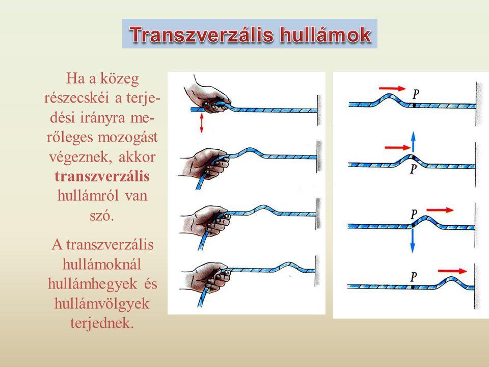 Ha a közeg részecskéi a terje- dési irányra me- rőleges mozogást végeznek, akkor transzverzális hullámról van szó. A transzverzális hullámoknál hullám